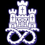 Newcastle Town logo